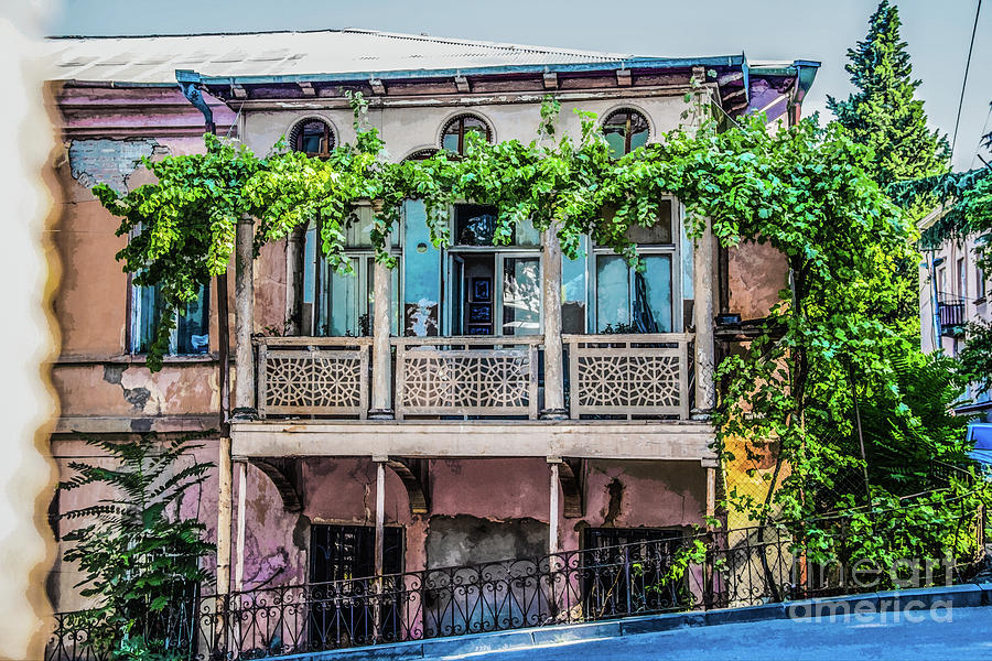 Old ornate grungy house in Tbilisi Georgia covered with grape vines  by Susan Vineyard