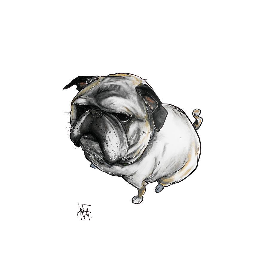 Old Pug Drawing