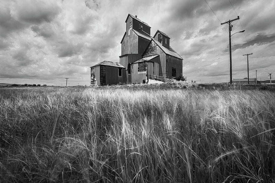 Old Rural Elevator In Black And White Photograph
