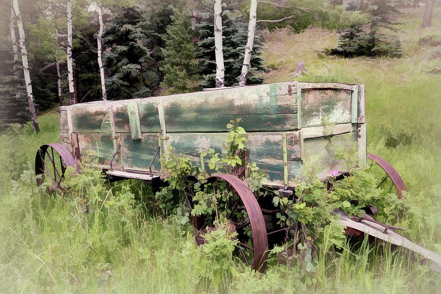 Old Wagon with Steel Wheels by Lowell Monke