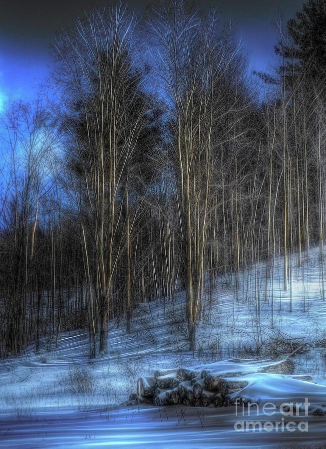 old wood pile by AnnMarie Parson-McNamara