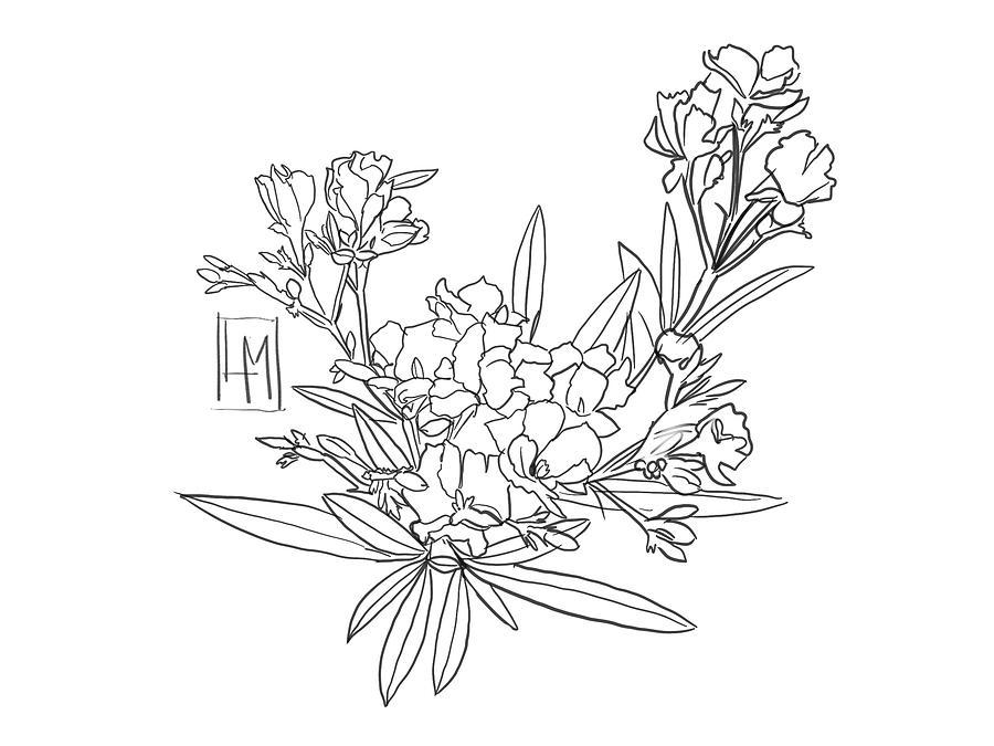 Oleanders Drawing