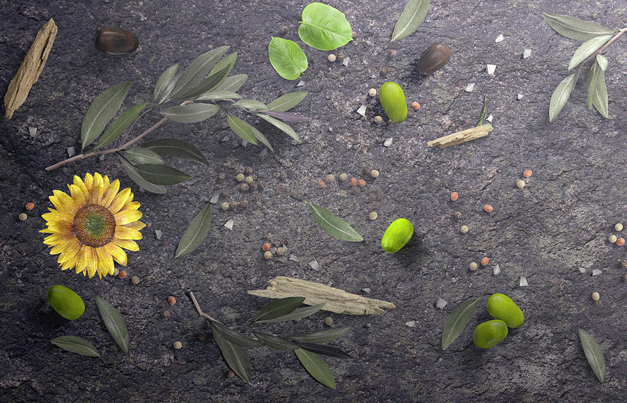 Olives Herbs Spices And Sunflower by Johanna Hurmerinta