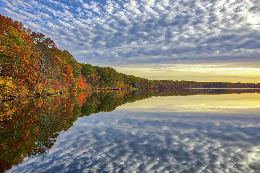 Olney Pond at Lincoln Woods State Park by Juergen Roth