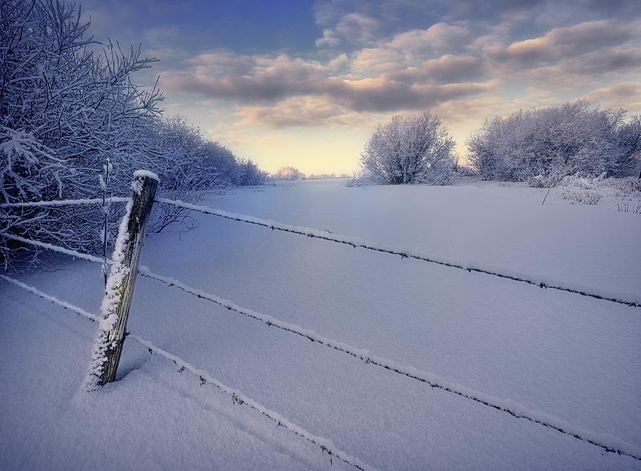 On Frozen Pond by Dan Jurak