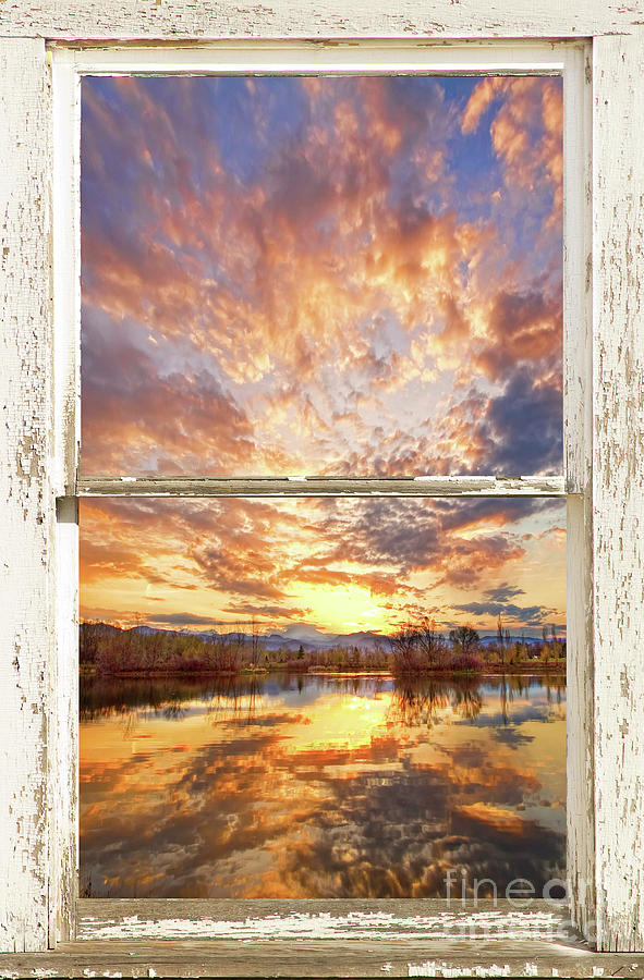 On Golden Ponds White Distressed Window Portrait View by James BO Insogna