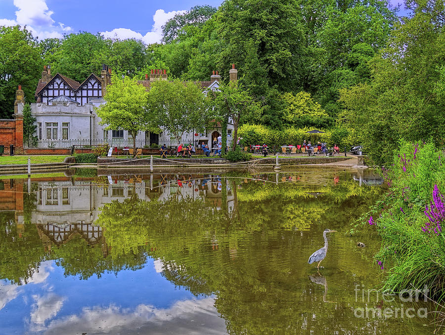 Surrey Photograph - On Reflection by Leigh Kemp