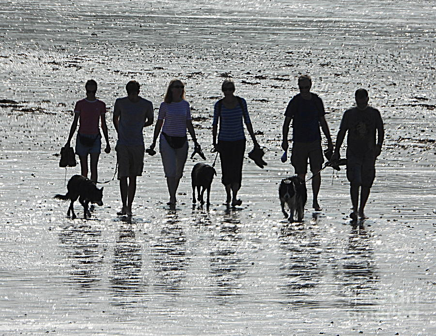 Bay Photograph - On The Beach by Andy Thompson
