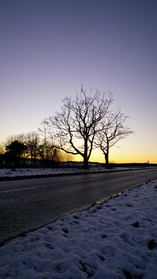 Winter Photograph - On the Road to Home by Elena Perelman