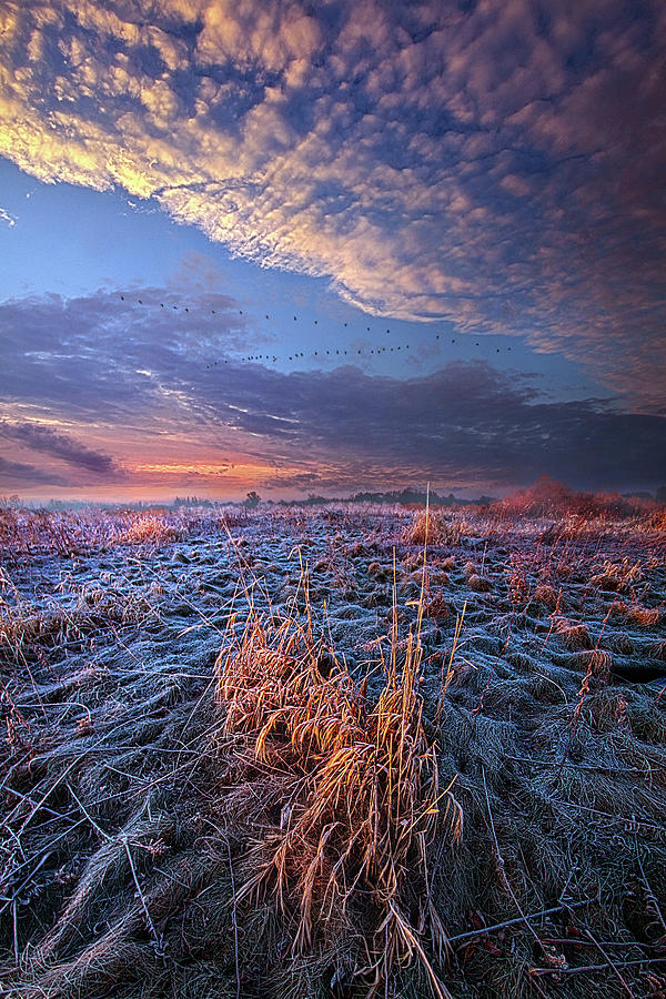 On The Way Out by Phil Koch