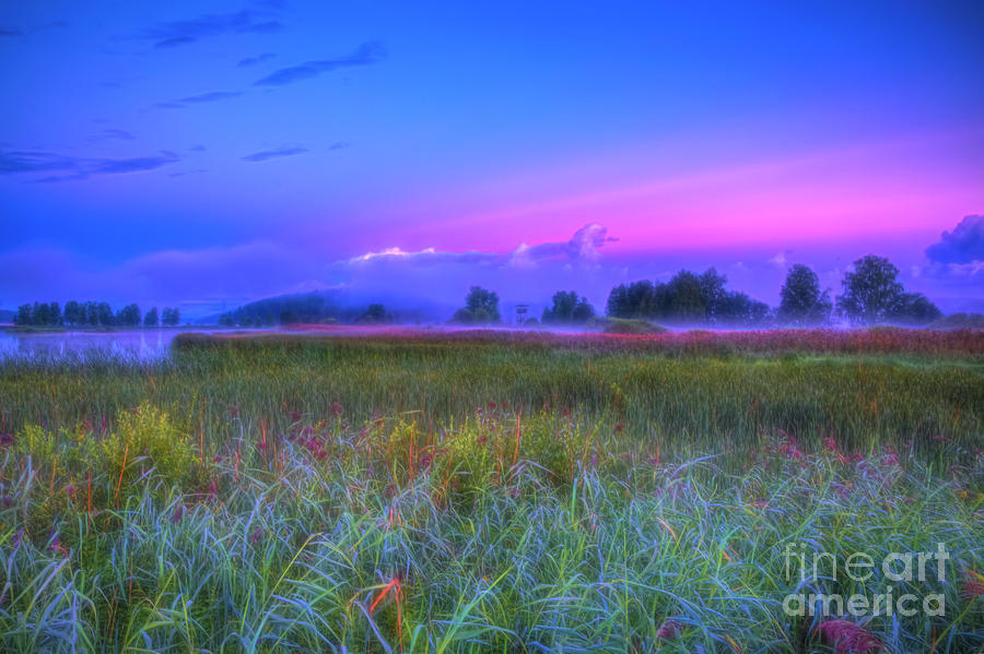 One Summer Morning Photograph