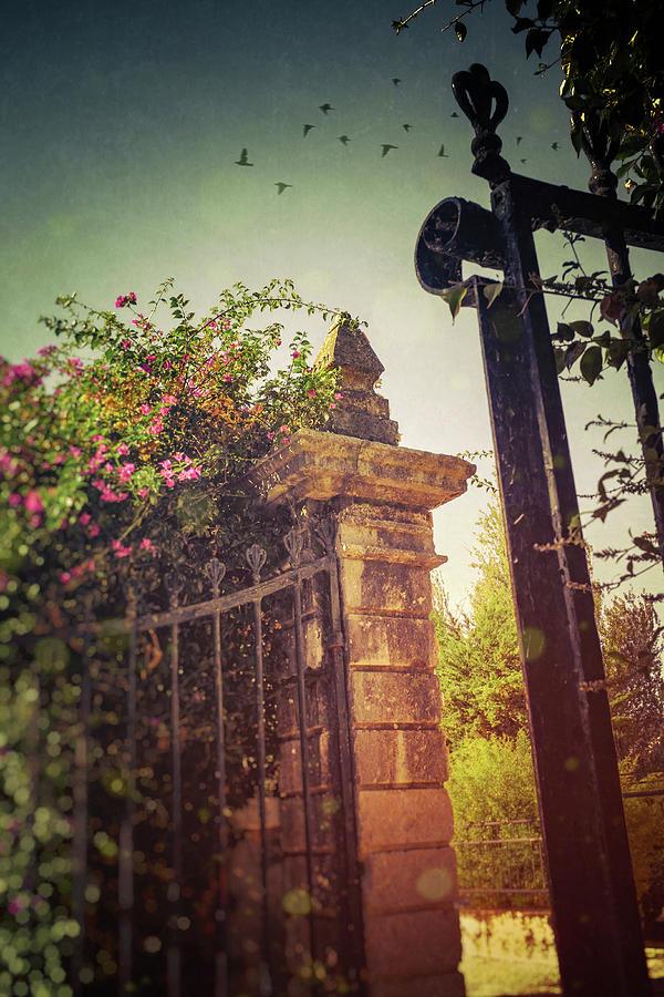 Opened Iron Gate by Carlos Caetano