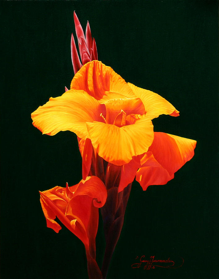 Floral Painting - Orange Canna by Gary  Hernandez