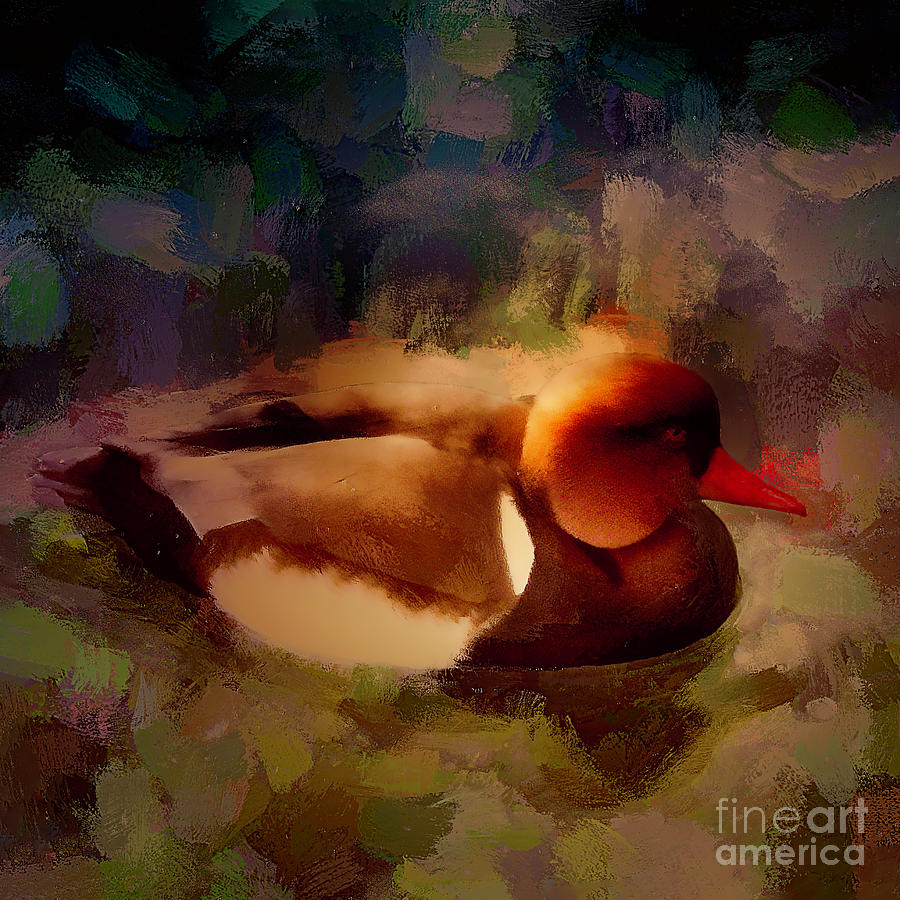 Orange Duck by Jack Torcello