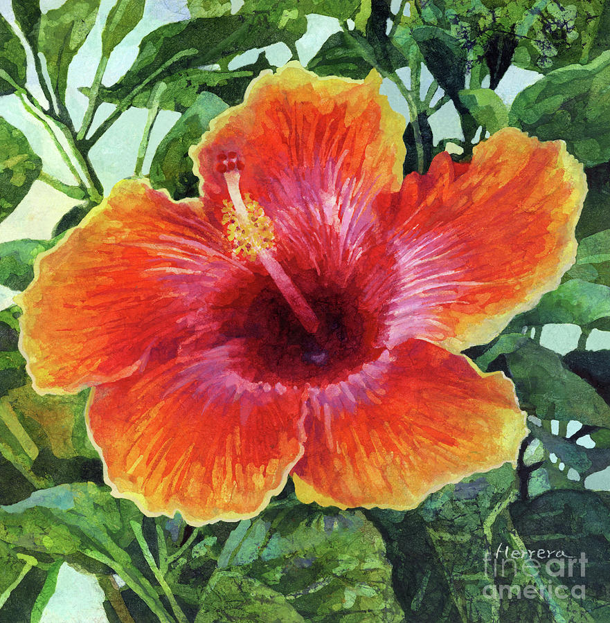 Orange Pink Hibiscus Painting