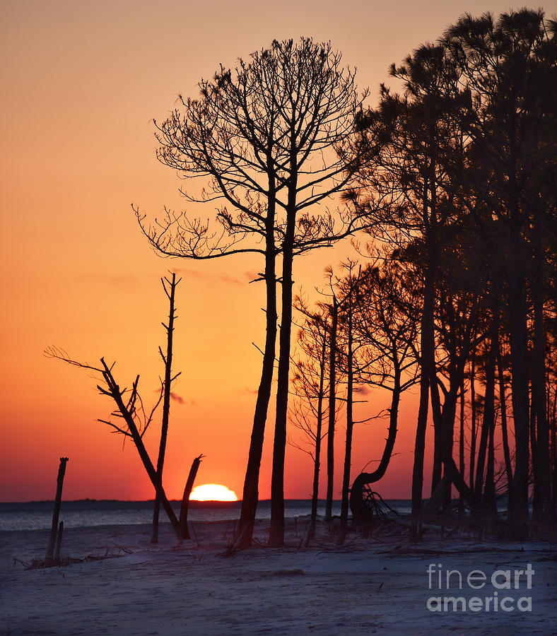 Orange Sunset On Dauphin Island, Alabama Photograph