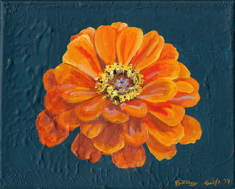 Orange Zinnia by Brittany Bert Selfe