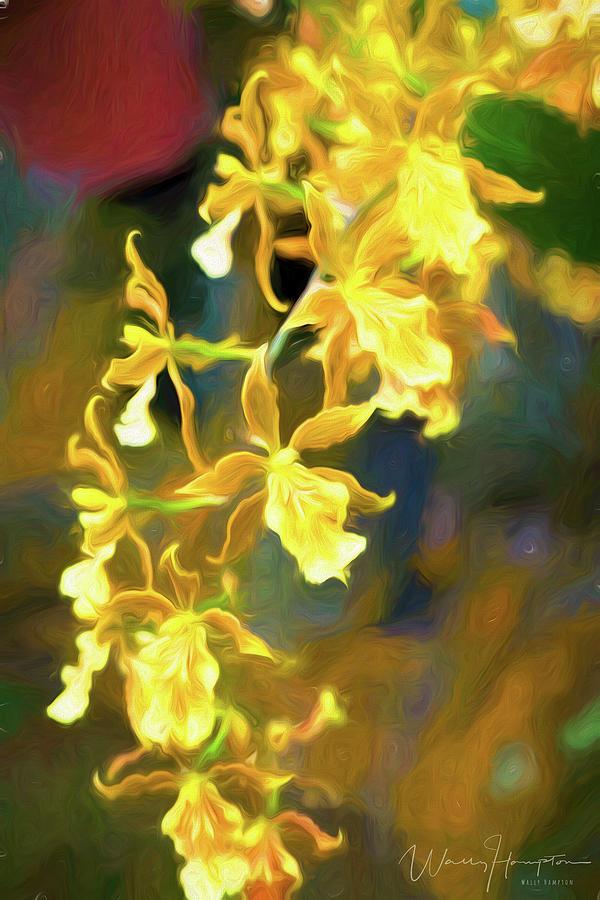 Orchid - 0849 Digital Art by Wally Hampton