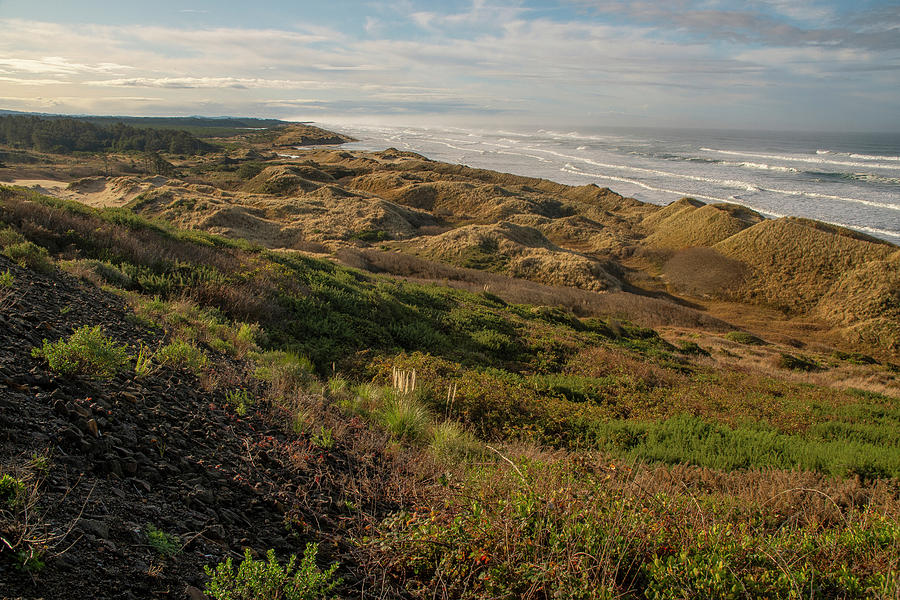 Oregon Coast View by Matthew Irvin