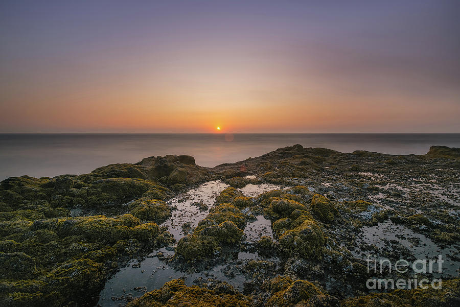 Oregon Photograph - Oregon Tidepool Sunset  by Michael Ver Sprill