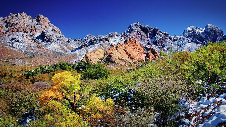 Organ Mountains Transition Photograph