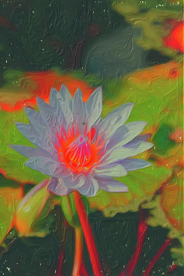 Ornamental Aquatic Flower by Don Wright