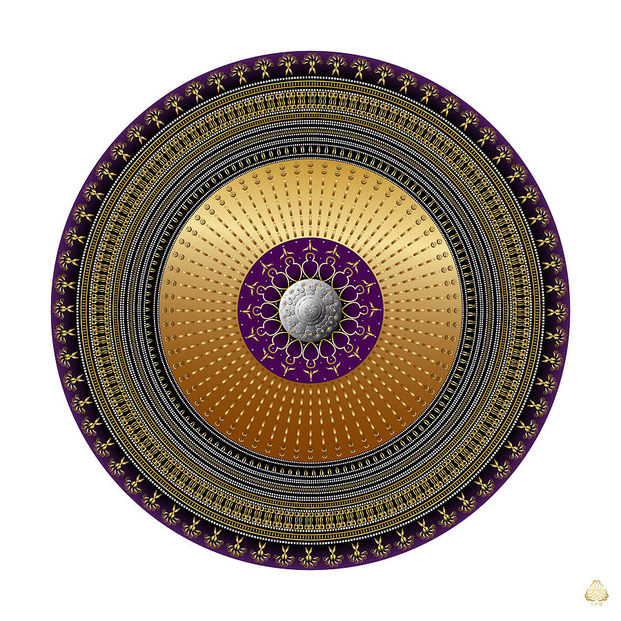 Ornativo Vero Circulus No 4180 Digital Art