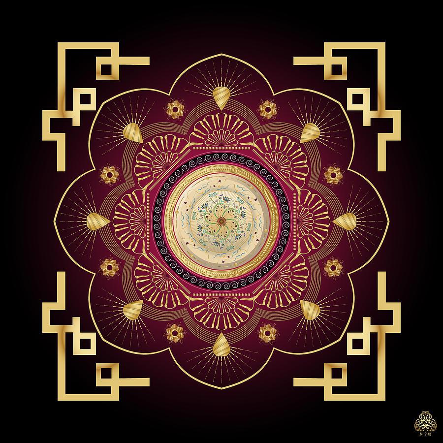 Ornativo Vero Circulus No 4184 Digital Art