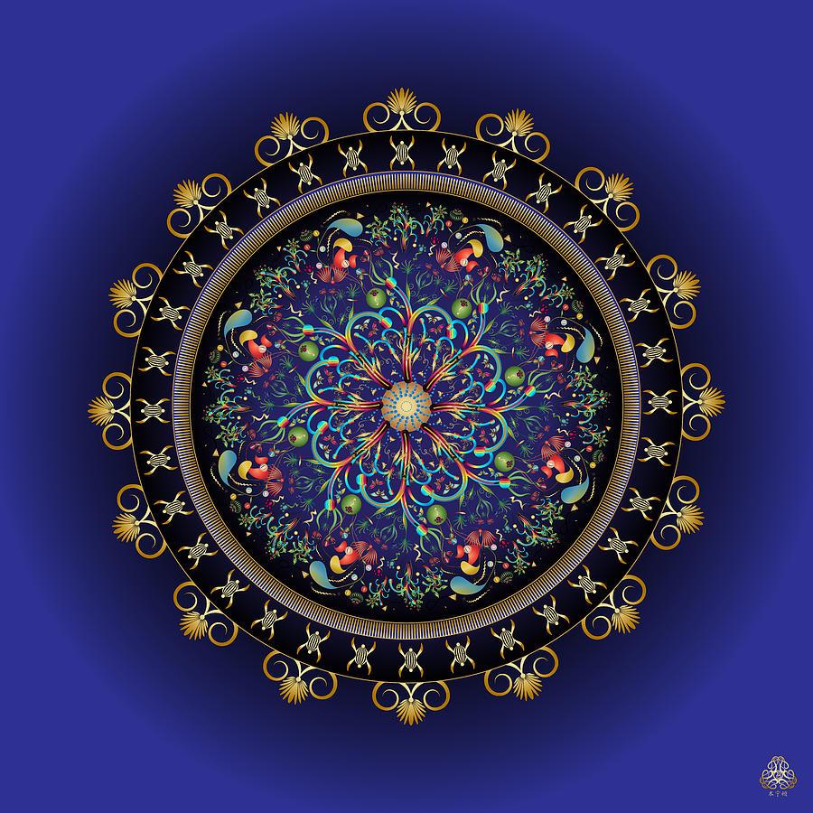 Ornativo Vero Circulus No 4191 Digital Art