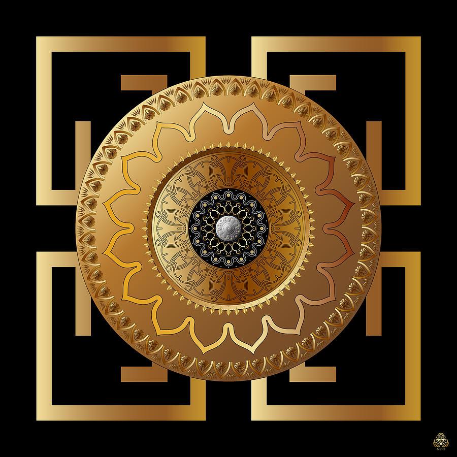 Ornativo Vero Circulus No 4192 Digital Art