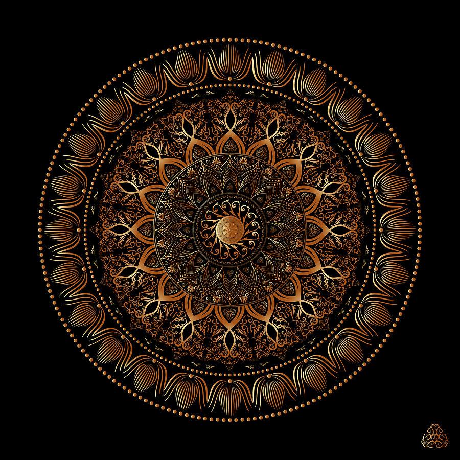 Ornativo Vero Circulus No 4198 Digital Art
