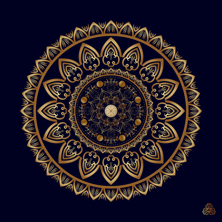 Ornativo Vero Circulus No 4199 Digital Art