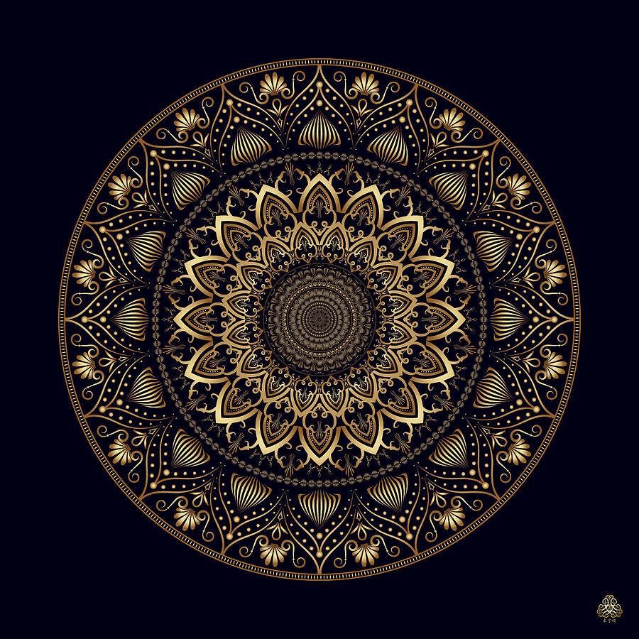 Ornativo Vero Circulus No 4201 Digital Art