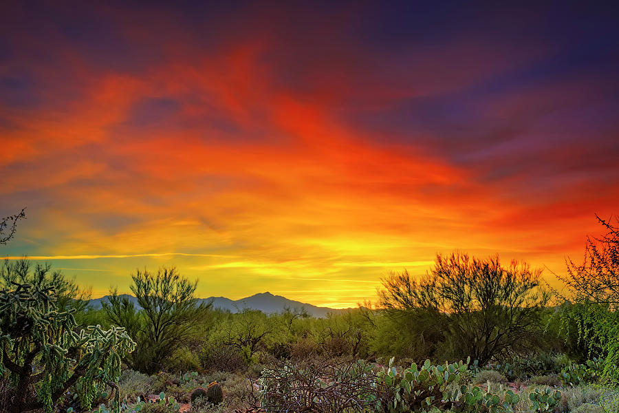 Oro Valley Sunset h1602 by Mark Myhaver