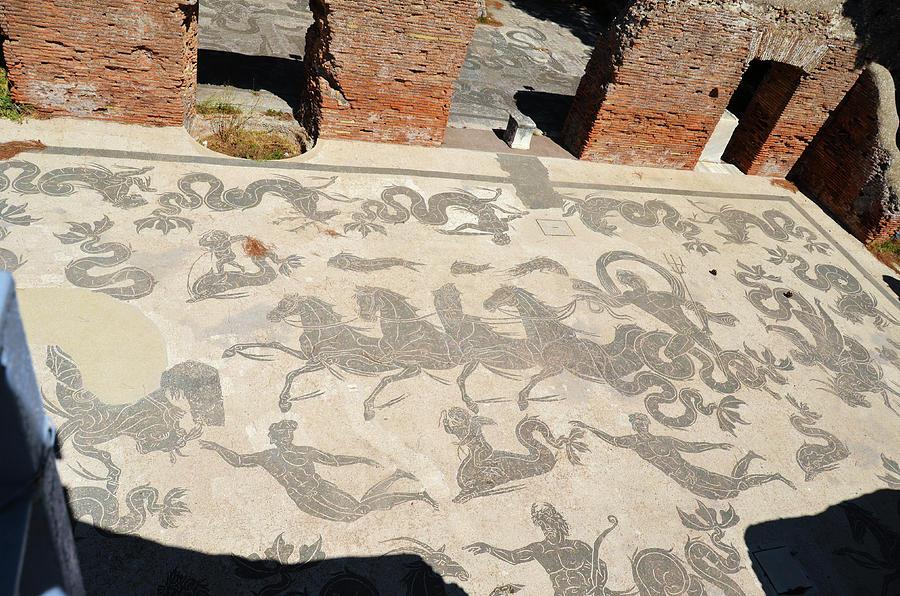 Ostia Antica Ancient Roman Baths of Neptune Tile Mosaics by Shawn O'Brien