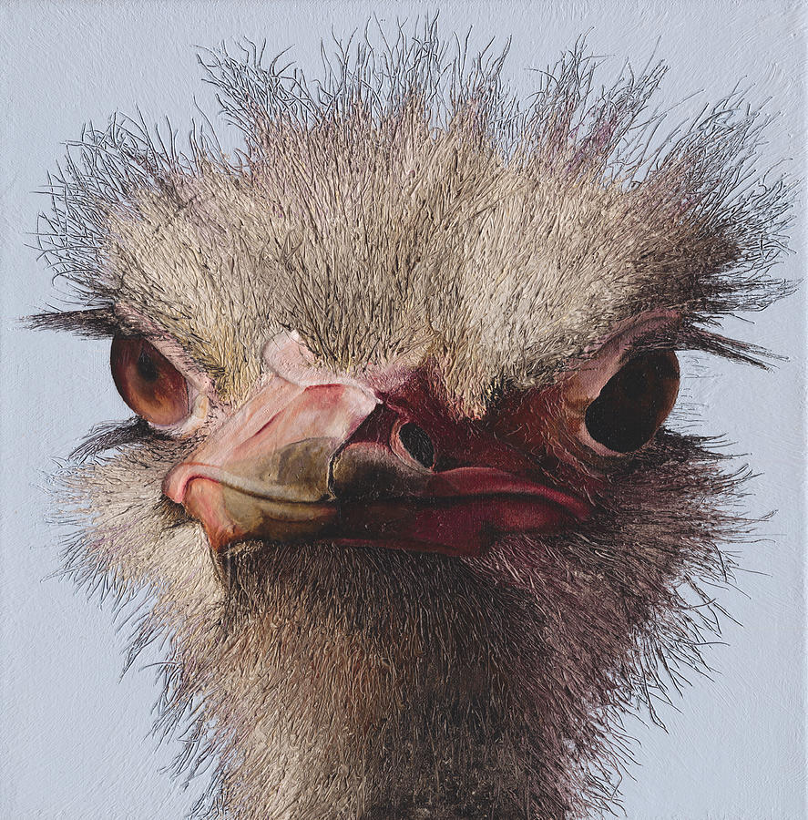 Ostrich Painting - Ostrich by Russell Hinckley