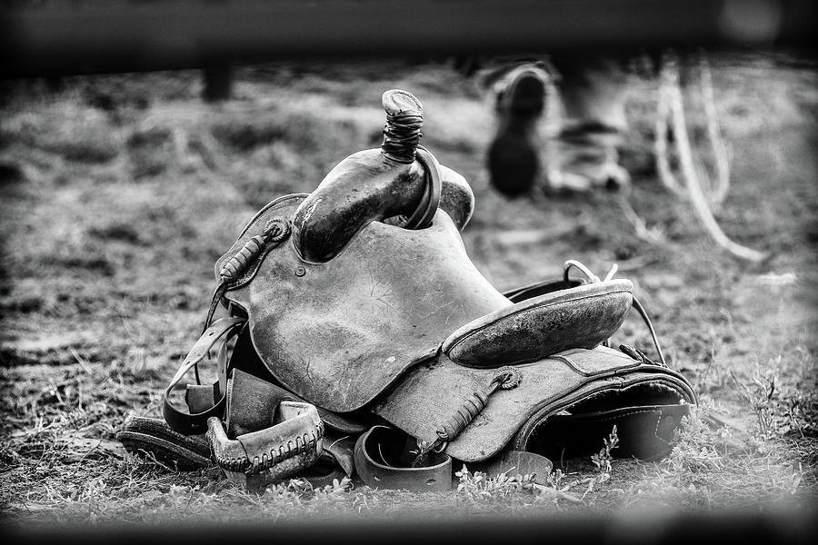 Saddle Photograph - Out of the Saddle by Kamie Stephen
