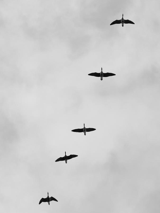 Overflights 11 by Jaroslav Buna