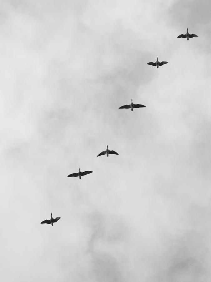 Overflights 13 by Jaroslav Buna