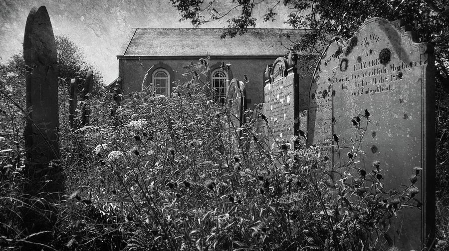 Overgrown Welsh Chapel Photograph