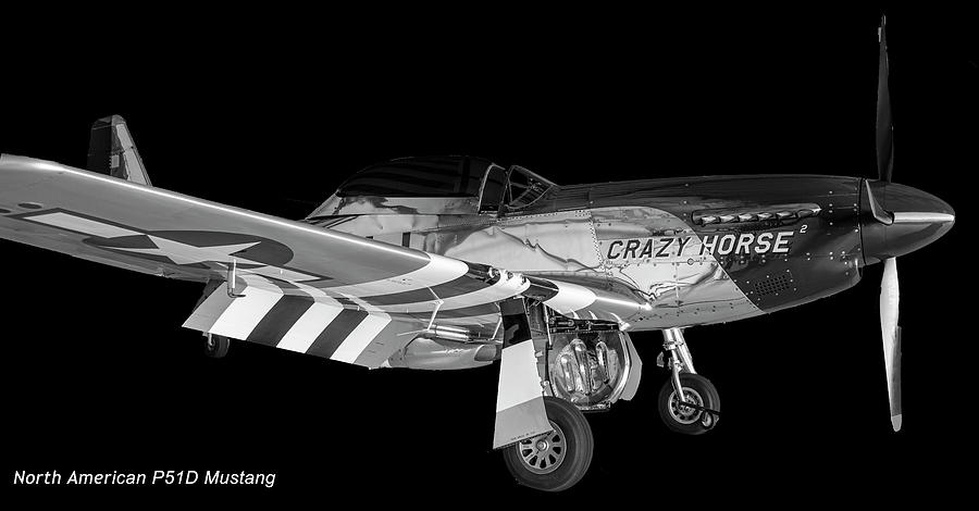 P51D Mustang by Philip Rispin