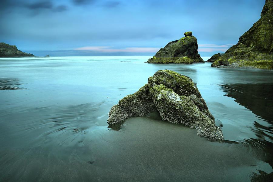 Pacific Northwest Photograph