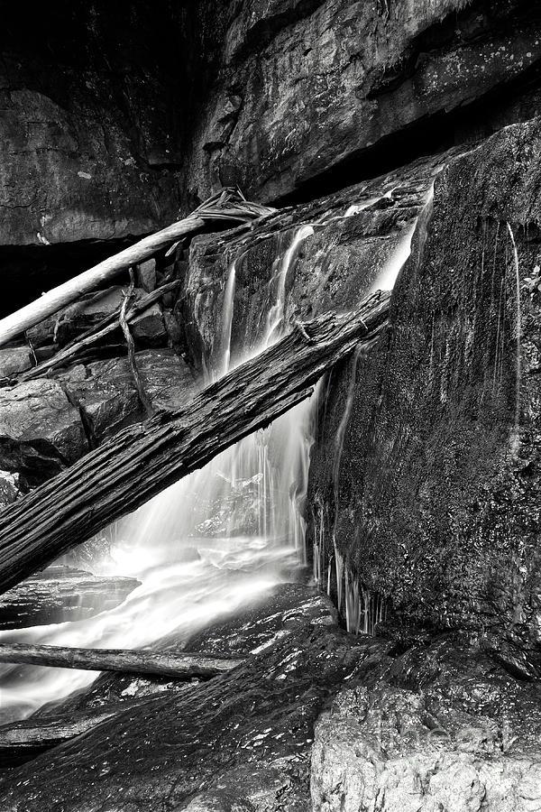 Dayton Photograph - Paine Creek 19 by Phil Perkins