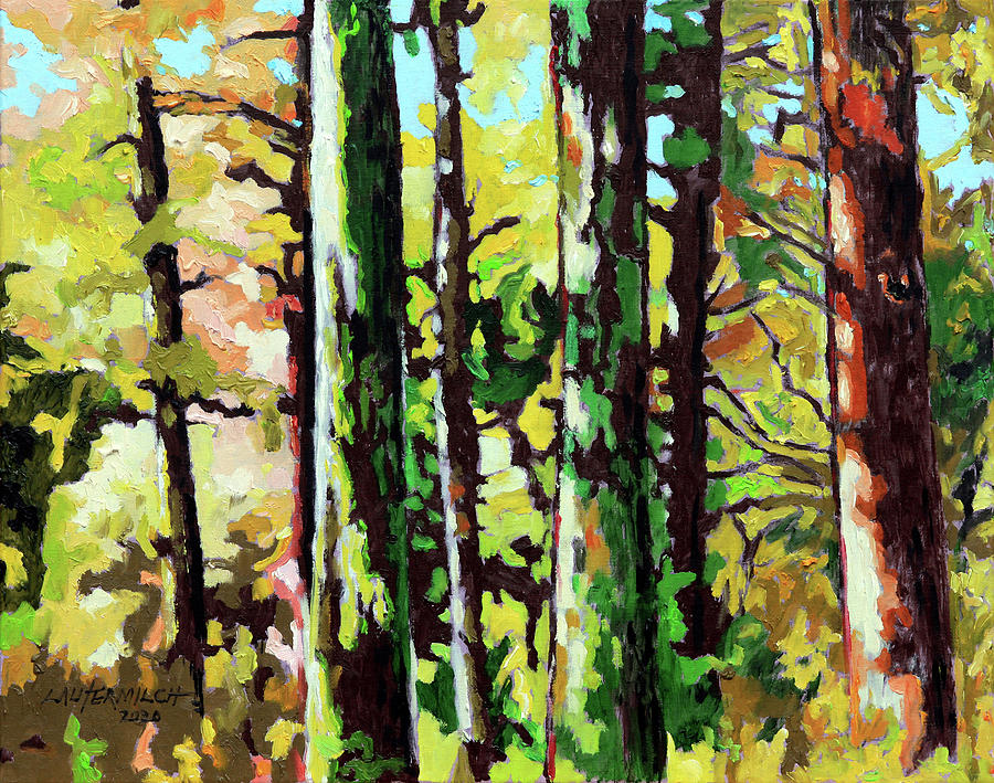 Trees Painting - Painted Forest by John Lautermilch