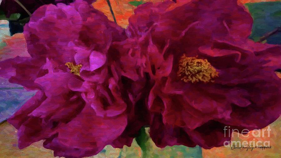 Painted Peonies by Chris Armytage