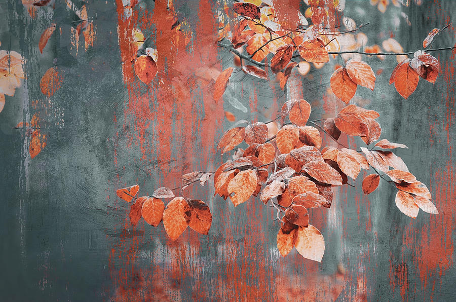Painterly Photograph - Painterly Autumn Leaves by Rob Visser