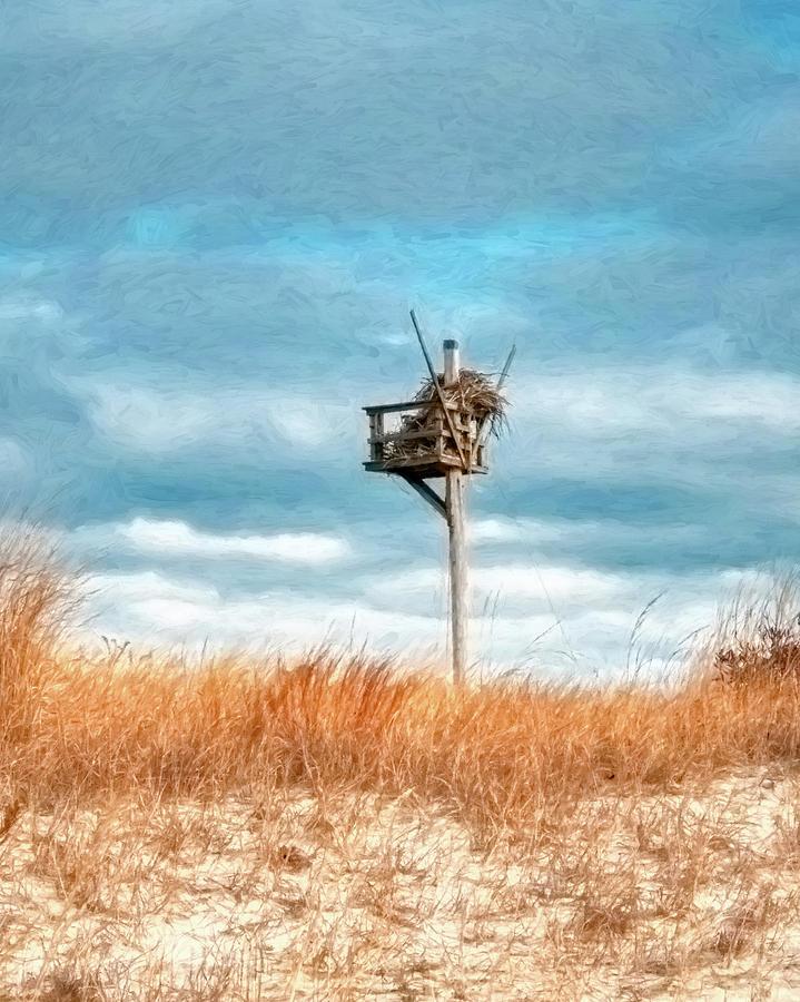 Painterly Osprey Nest At The Beach by Gary Slawsky