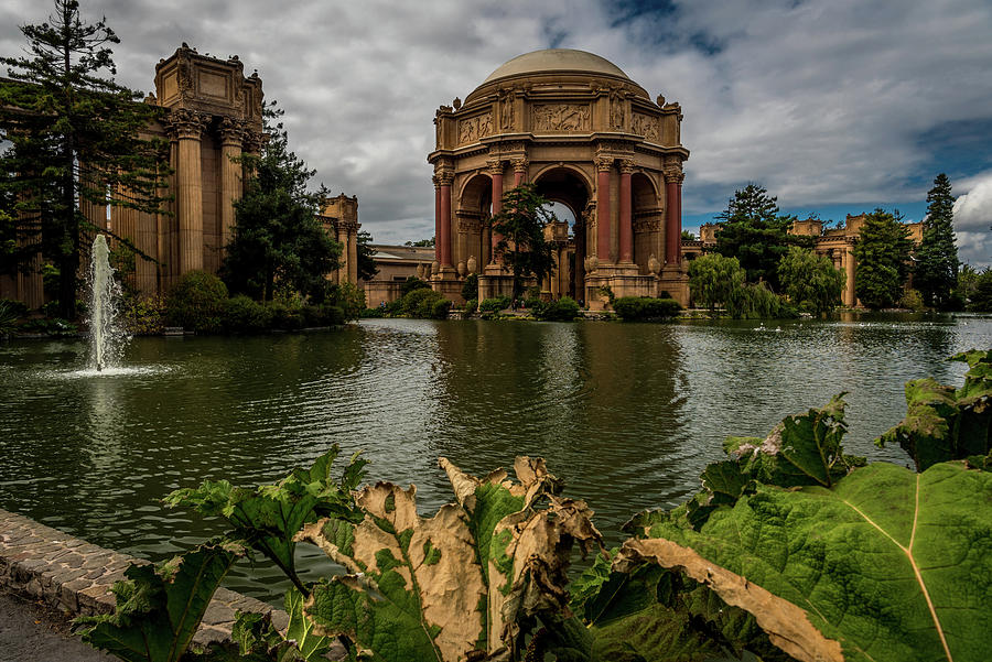 Palace of Fine Arts by James L Bartlett