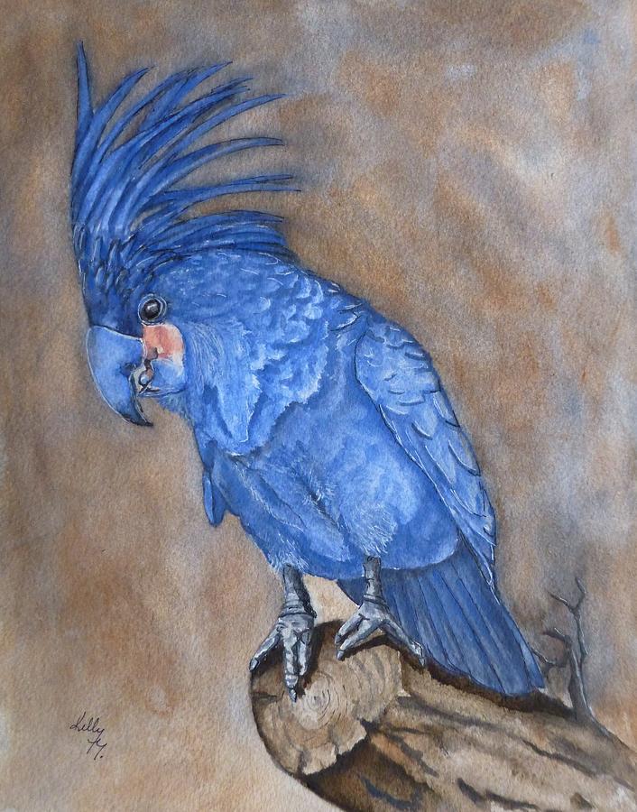 Palm Cockatoo Bird by Kelly Mills