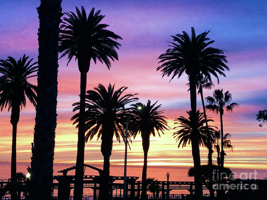 Palm Sunset - No. 2 by Doc Braham